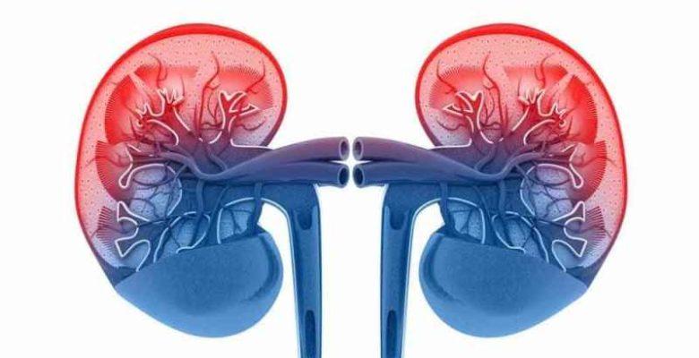 Diabetic Kidney Disease (Nephropathy)