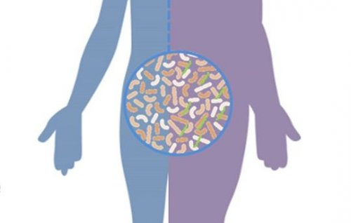 Gut Hormones and Diabetes
