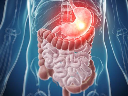 Diabetes and Digestive System